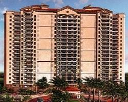 Florida Naples